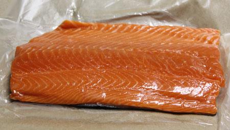 Sockeye Salmon 2011
